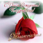 Открытка с днём рождения для одноклассницы скачать бесплатно на сайте otkrytkivsem.ru
