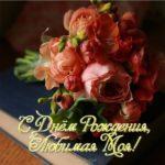 Открытка с днём рождения для жены скачать бесплатно на сайте otkrytkivsem.ru