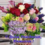 Открытка с днём рождения Камилла скачать бесплатно на сайте otkrytkivsem.ru
