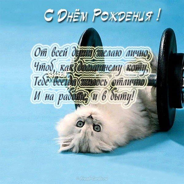 Для, открытка с днем рождения женщине с котами