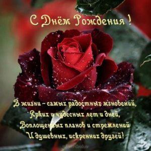 Открытка с днём рождения начальнице женщине скачать бесплатно на сайте otkrytkivsem.ru