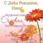 Открытка с днём рождения Ника скачать бесплатно на сайте otkrytkivsem.ru