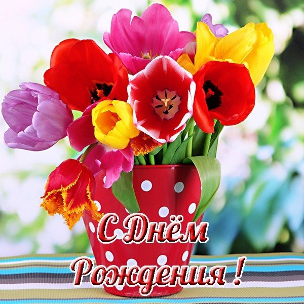 Открытка с днём рождения одногруппнице скачать бесплатно на сайте otkrytkivsem.ru
