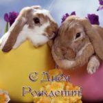 Открытка с днём рождения с кроликом скачать бесплатно на сайте otkrytkivsem.ru