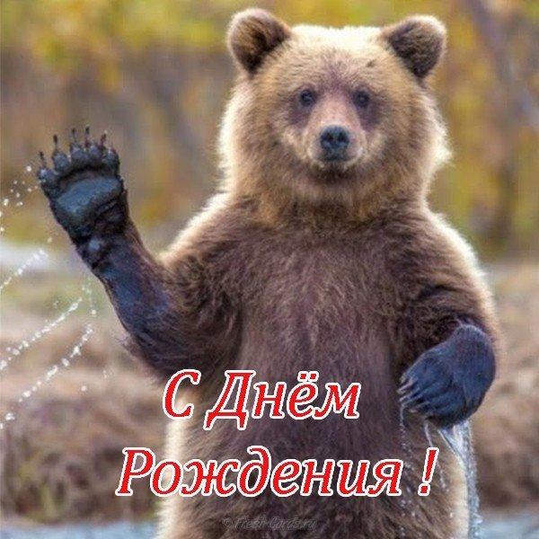 Открытка с днём рождения с медведями скачать бесплатно на сайте otkrytkivsem.ru