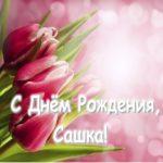 Открытка с днём рождения Сашка скачать бесплатно на сайте otkrytkivsem.ru
