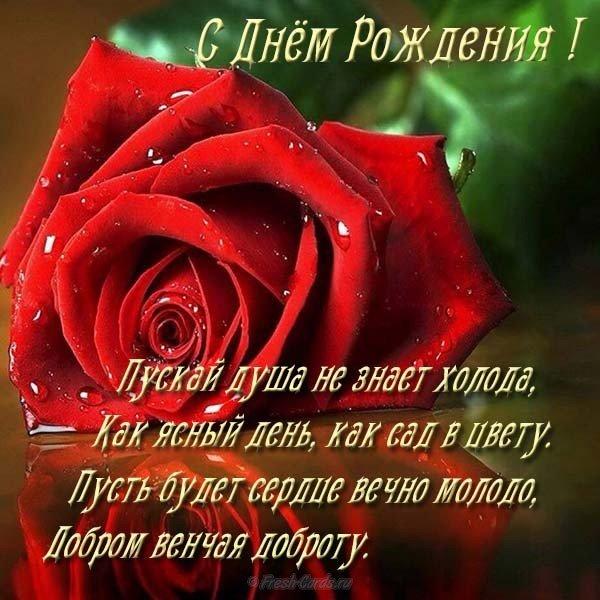 otkrytka s dnyom rozhdeniya zhenschine krasiye rozy