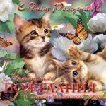 Открытка с днём рождения женщине с котятами скачать бесплатно на сайте otkrytkivsem.ru