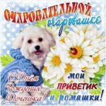 Открытка с др дочери скачать бесплатно на сайте otkrytkivsem.ru