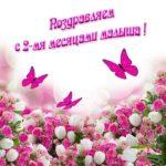 Открытка с двумя месяцами ребенка скачать бесплатно на сайте otkrytkivsem.ru