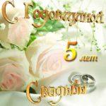 Открытка с годовщиной свадьбы 5 скачать бесплатно на сайте otkrytkivsem.ru