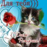 Открытка с кошками на день рождения скачать бесплатно на сайте otkrytkivsem.ru