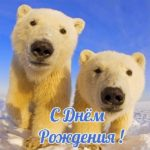 Открытка с медвежатами с днем рождения скачать бесплатно на сайте otkrytkivsem.ru