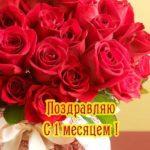 Открытка с месяцем ребенка девочек скачать бесплатно на сайте otkrytkivsem.ru