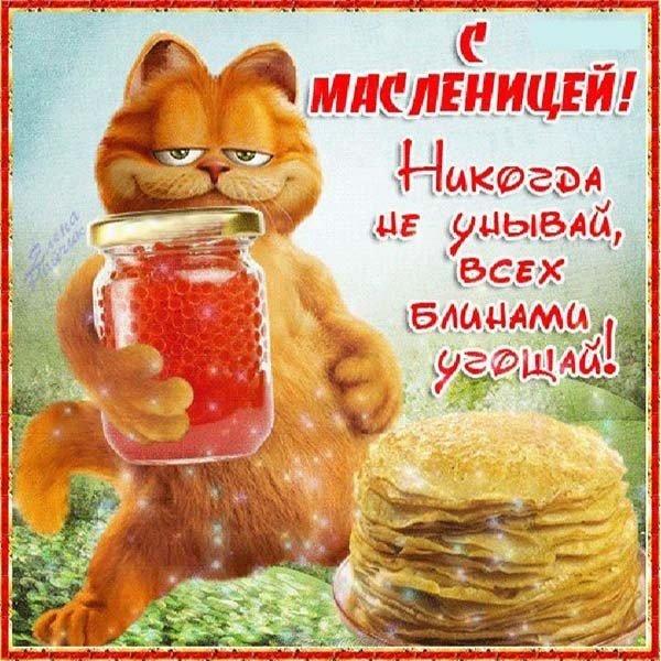 otkrytka s nastupayuschey maslenitsey prikolnaya