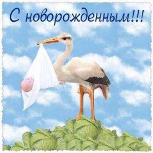 Открытка с новорожденным бесплатно скачать бесплатно на сайте otkrytkivsem.ru
