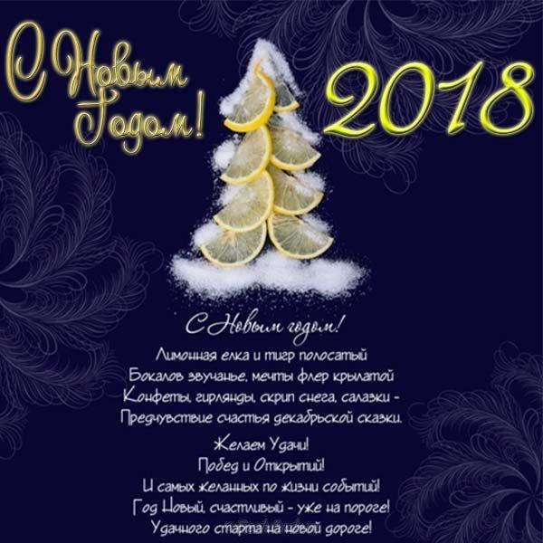 Картинки курбан, поздравления открытка с новым годом организации