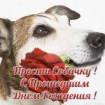 Открытка с прошедшим днем рождения мужчине скачать бесплатно на сайте otkrytkivsem.ru