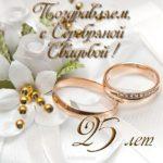 Открытка с серебряной свадьбой скачать бесплатно на сайте otkrytkivsem.ru
