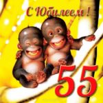 Открытка с юбилеем 55 лет с фото скачать бесплатно на сайте otkrytkivsem.ru