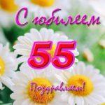 Открытка с юбилеем 55 женщине скачать бесплатно на сайте otkrytkivsem.ru