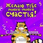 Открытка Саше с днем рождения смешная скачать бесплатно на сайте otkrytkivsem.ru