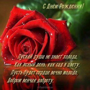 Открытка со стихами с днем рождения бесплатная скачать бесплатно на сайте otkrytkivsem.ru