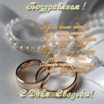 Открытка со свадьбой в стихах красивая скачать бесплатно на сайте otkrytkivsem.ru