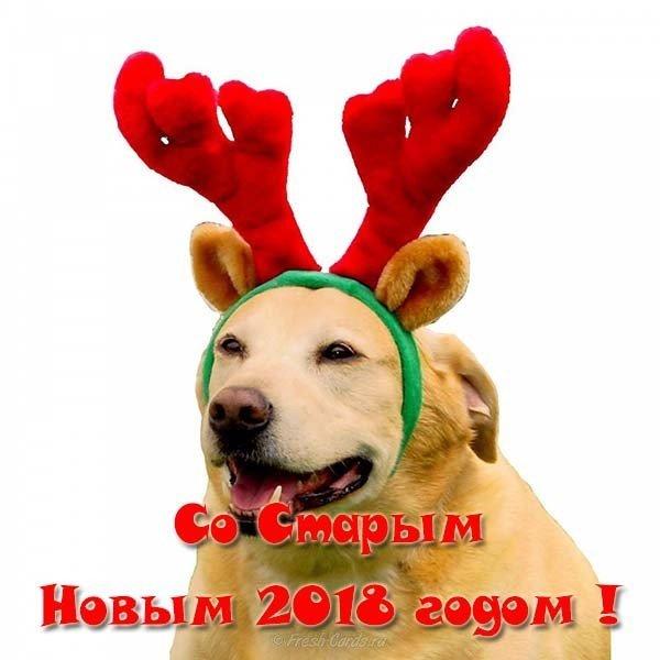 Открытка старый новый год 2018 собаки скачать бесплатно на сайте otkrytkivsem.ru