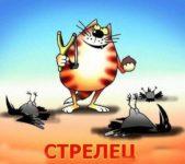 Открытка стрельцу на день рождения с котом скачать бесплатно на сайте otkrytkivsem.ru