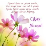Открытка в стихах с днём матери скачать бесплатно на сайте otkrytkivsem.ru