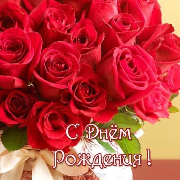 otkrytka zhenschine s dnem rozhdeniya shikarnye rozy