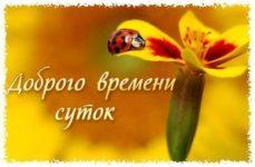 Пожелания доброго времени суток милое скачать бесплатно на сайте otkrytkivsem.ru