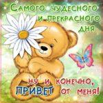 Открытка чудесного дня с медведем скачать бесплатно на сайте otkrytkivsem.ru