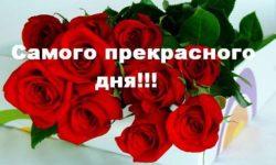 Открытка пожелания хорошего дня с розами скачать бесплатно на сайте otkrytkivsem.ru