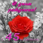 Поздравить женщину с 45 летием открытка скачать бесплатно на сайте otkrytkivsem.ru