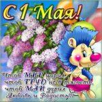 Поздравительная открытка 1 мая коллегам скачать бесплатно на сайте otkrytkivsem.ru