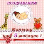 Поздравительная открытка 5 месяцев скачать бесплатно на сайте otkrytkivsem.ru