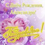 Поздравительная открытка с днем рождения Александра скачать бесплатно на сайте otkrytkivsem.ru