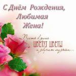 Поздравительная открытка с днем рождения любимой жене скачать бесплатно на сайте otkrytkivsem.ru