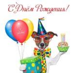 Поздравительная открытка с днем рождения с собаками скачать бесплатно на сайте otkrytkivsem.ru