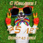 Поздравительная открытка с юбилеем 45 скачать бесплатно на сайте otkrytkivsem.ru