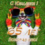 Поздравительная открытка с юбилеем 65 лет женщине скачать бесплатно на сайте otkrytkivsem.ru