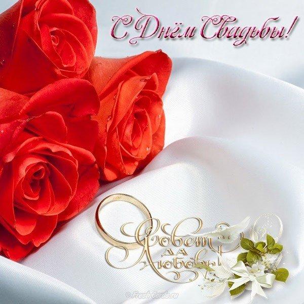 pozdravitelnaya otkrytka so svadboy besplatno