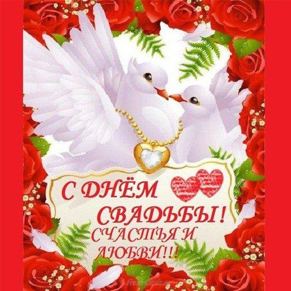 Поздравительная открытка со свадьбой красивая скачать бесплатно на сайте otkrytkivsem.ru