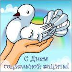 Поздравление картинка с днем работников социальной защиты скачать бесплатно на сайте otkrytkivsem.ru