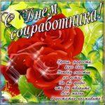 Поздравление открытка ко дню социального работника в стихах скачать бесплатно на сайте otkrytkivsem.ru