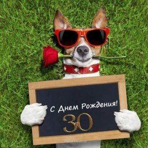 Поздравление с 30 открытка скачать бесплатно на сайте otkrytkivsem.ru