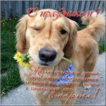 Поздравление с 8 марта открытка скачать бесплатно на сайте otkrytkivsem.ru