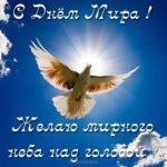 Поздравление с днем мира в картинке скачать бесплатно на сайте otkrytkivsem.ru